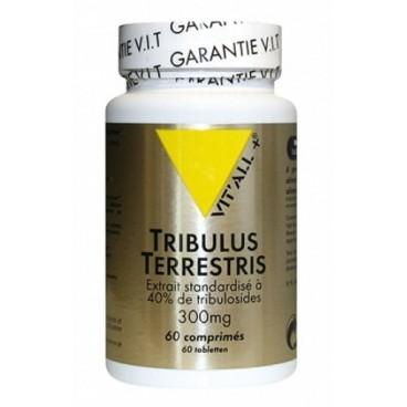 Tribulus terrestris - extrait standardisé - 60 comprimés